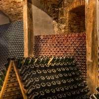 Der beste Champagner - online über Navinum bestellen