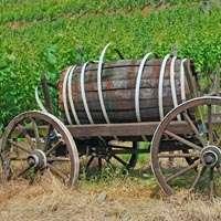 Der beste Wein der Ahr zum Top-Preis! Jetzt bei NAVINUM bestellen