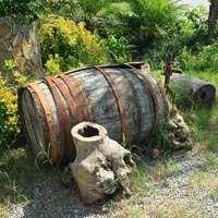 Der beste Nahe-Wein zum Top-Preis! Jetzt bei NAVINUM bestellen