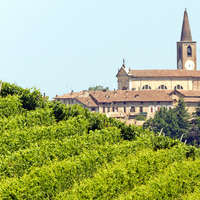 Wein aus der Lombardei - jetzt entdecken!
