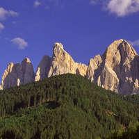 Wein aus Trentino und Südtirol