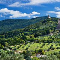Wein aus Umbrien - jetzt entdecken