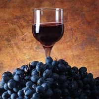 Fantastischer Rotwein ohne schweren Alkoholgehalt