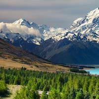 Der beste Wein aus Neuseeland zum Top-Preis