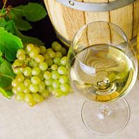 Charmant & elegant: Weißburgunder-Wein
