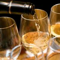 Beste Weine - hoch bewertet - bei Navinum mit Bestpreisgarantie