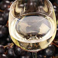 Ob als Stillwein oder Champagner - immer ein Hochgenuss