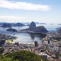 Der beste Wein aus Brasilien