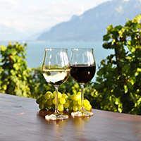 Reduzierter Wein - hier gibt es hohe Rabatte