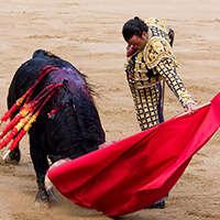 Günstige spanische Weine mit Rabatt